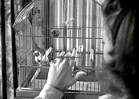 CAT PEOPLE '42 ( IX )