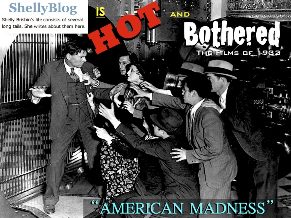 AMERICAN MADNESS ( SHELLY BLOG )