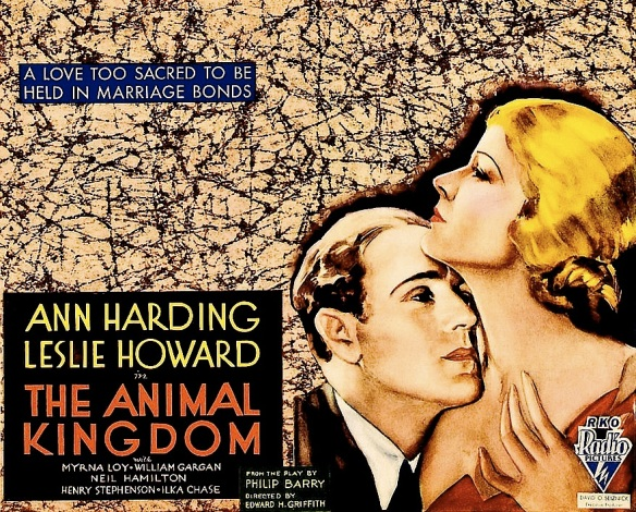ANIMAL KINGDOM ( MOVIE POSTER )